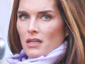 "Brooke Shields says that she did not give her ""stamp of approval"" to Andre Agassi's autobiography."