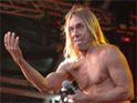 Iggy Pop works on new Williamson songs