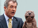 A DVD copy of The Beaver is allegedly stolen from star Mel Gibson's mailbox.