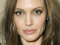 "Andrew Morton's biography of Angelina Jolie will include ""fascinating facts"" about the actress."