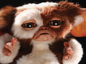 Turn off the bright lights - those Gremlins are back in cinemas for Christmas.