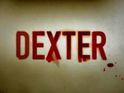 Three Rivers star Katherine Moennig is to make a guest appearance on Dexter.