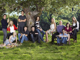 Brothers & Sisters cast