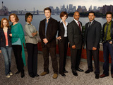 The cast of Castle