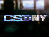 CSI: New York logo