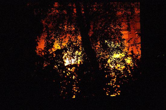 EastEnders Fire