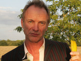 Sting at the launch of his new farm shop