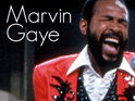 Julien Temple is rumored to be directing a biopic about soul singer Marvin Gaye.