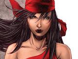 Elektra Assassin for Hire