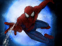 Producers of the Spider-Man musical deny reports that a co-director is to join the project.