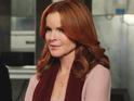 Marcia Cross wants Bree's ex-lovers to return to Desperate Housewives.