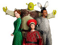 The cast of Shrek: The Musical welcome celebrity guests to the official opening night of the musical.