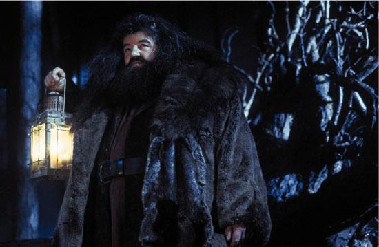 Robbie Coltrane as Hagrid