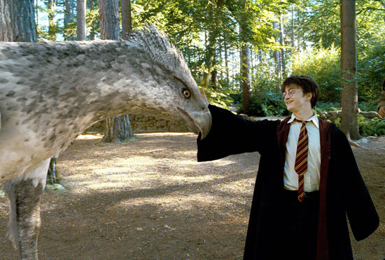 Harry and Buckbeak the hippogriff