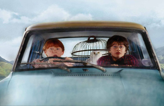 Ron, Hedwig and Harry