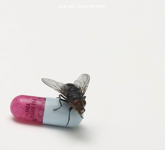 Red Hot Chili Peppers 'I'm With You'
