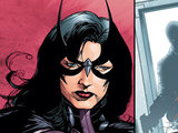 DC Comics&#39; Huntress