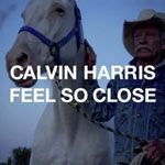 Calvin Harris: 'Feel So Close'
