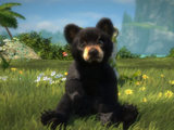 Screenshot from Kinectimals now with Bears!