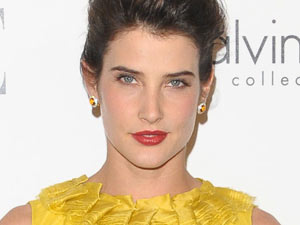 18th Annual Women in Hollywood Tribute: Cobie Smulders