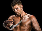 Spartacus: Vengeance: Liam McIntyre as Spartacus