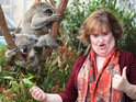 Susan Boyle fell in love with Sydney after visiting Bondi Beach.