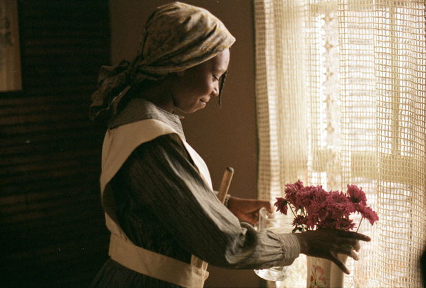 'The Colour Purple' (1985)