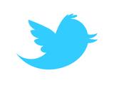 Twitter bird icon