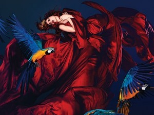 Paloma Faith &#39;Fall To Grace&#39; album cover