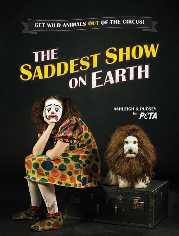 Ashleigh & Pudsey front PETA campaign in new poster