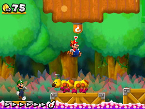 'New Super Mario Bros 2' screenshot