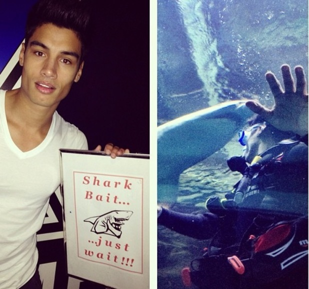 Siva Kaneswaran of The Wanted swims with sharks.