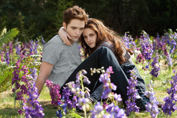 Bella and Edward meadow scene