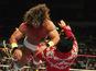 WWE SummerSlam 25th anniversary