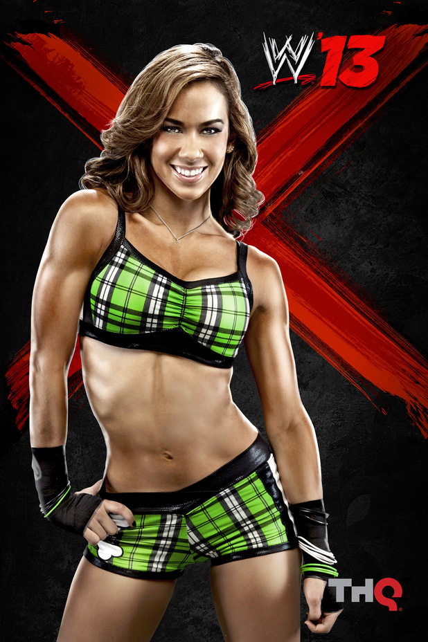 next wwe 13 roster aj lee copyright thq 1 of 15