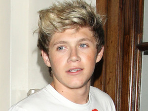 Niall Horan attends LIam Payne's 19th birthday celebrations