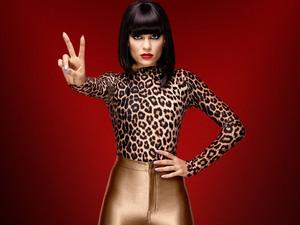 Jessie J, The Voice