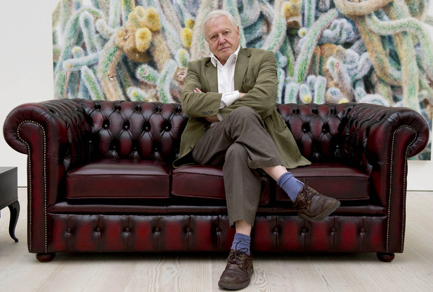 Sir David Attenborough at a UKTV autumn/winter press launch at the Saatchi Gallery, September 11 2012