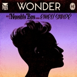Naughty Boy ft. Emeli Sandé 'Wonder' single artwork.