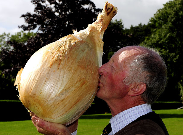 Peter Glazebrook with the world's heaviest onion (18lb 1oz) - September 2012