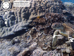 Coral reefs shown through google maps street view