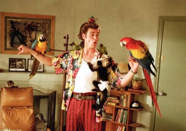 Jim Carrey, Ace Ventura: Pet Detective (1994)
