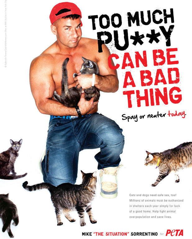 Jersey Shore star Mike &#39;The Situation&#39; Sorrentino in PETA advert.
