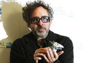 Tim Burton says Frankenweenie's nomination is validation for cast and crew.