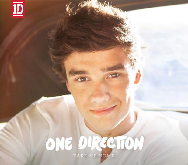 Music: One Direction Take Me Home Covers