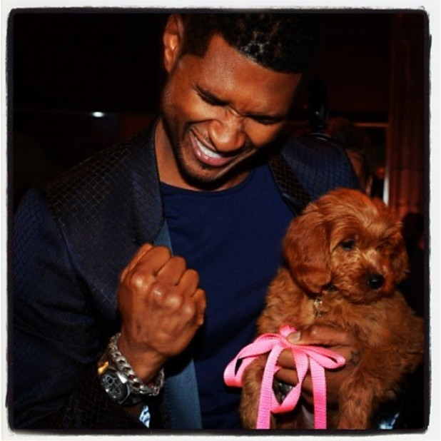 Usher tweets new puppy image