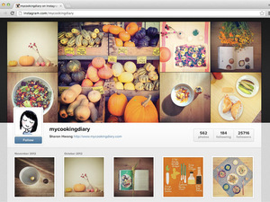 Instagram web profiles screenshot