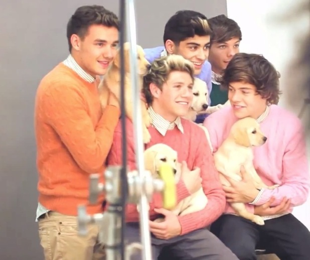 One Direction cuddle puppies, wear jumpers in Wonderland shoot.