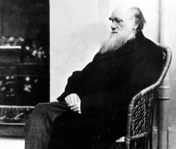 Charles Darwin poses in a wicker chair in 1875 at an unknown location
