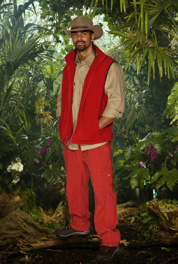 I'm A Celebrity... Get Me Out Of Here, David Hayes